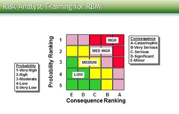 Risk Analyst Training for RBMI